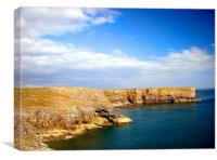 Stackpole Headland.Embossed.Wales., Canvas Print