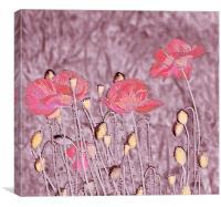 Poppy Art., Canvas Print