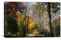 Central Park, New York, Canvas Print