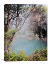The Bubbling Cauldrons of Rotorua, Canvas Print