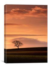 Pastoral layers, Canvas Print