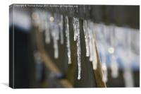 Icicles, Canvas Print