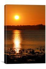 Hydrofoil Sunset, Canvas Print
