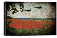 Over The Poppy Field, Canvas Print