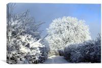 Winter scene, Canvas Print