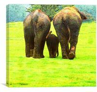 Elephants, Canvas Print