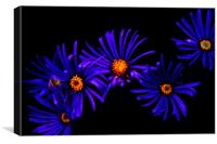 Blue Petals, Canvas Print