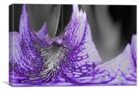 Glass Flower, Canvas Print