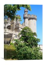 Arundel Castle and Grounds, Canvas Print
