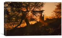 Autumn Sunburst, Canvas Print