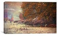 Autumn landscape, Canvas Print