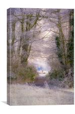 A Frosty Canopy, Canvas Print
