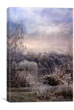 Wonderful Winterland, Canvas Print