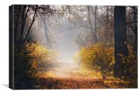 Morning has broken, Canvas Print