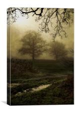 Through the mist, Canvas Print