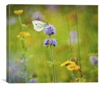 Perfect summer day, Canvas Print