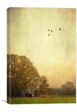 one day i will fly away, Canvas Print
