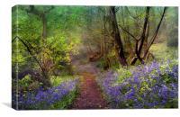 Spring Mist, Canvas Print
