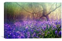Purple Haze, Canvas Print