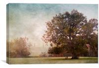 The Old Oak Tree, Canvas Print
