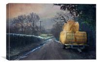 Down the lane, Canvas Print
