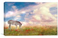 Enchantment in the Meadow , Canvas Print