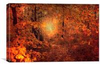 Fairy Pathway, Canvas Print