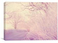 Frosty Hedgerow, Canvas Print