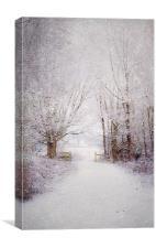 Winter wonderland , Canvas Print
