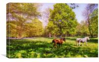 Spring Meadow, Canvas Print