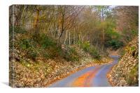 Autumn Lane, Canvas Print