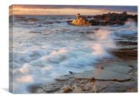 Golden Coast, Canvas Print