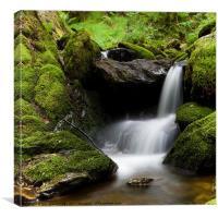 Hafod Falls, Canvas Print