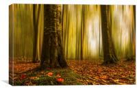 Autumn beech woods with blur, Canvas Print