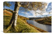 Elan Valley autumn view, Canvas Print
