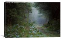 Misty soggy walk in the woods, Canvas Print