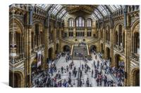 The Natural History Museum, London, Canvas Print