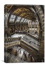 Natural History Museum, London, Canvas Print