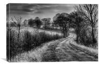 Along The Lane, Canvas Print