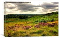 Burbage Valley2, Canvas Print