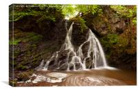 Fairy Glen Waterfalls, Inverness, Canvas Print