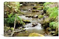 Flowing Water2