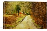 Colourful Path, Canvas Print