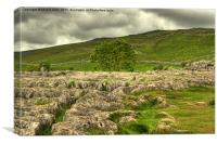 Limestone pavement, Malham, Canvas Print
