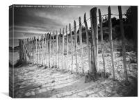 Fencing on Holkham beach, Canvas Print