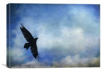 Raven Against a Painted Blue Sky, Canvas Print
