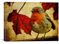 Robin and Red Leaves, Christmas..., Canvas Print