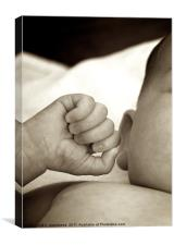 A newborn baby's hand., Canvas Print