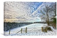Snowy landscape, Canvas Print