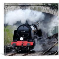 Swanage steam engine 31806, Canvas Print